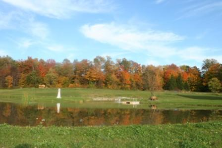fall-at-whatpond