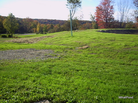 topsoil-and-grass