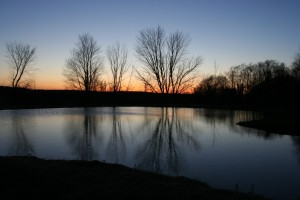pond sunset whatpond