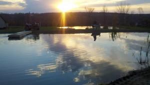 pond building