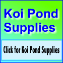 Koi Pond Supplies