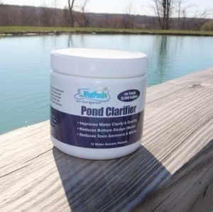 1000 gallon pond bacteria