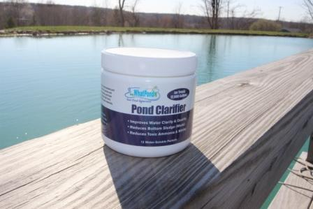 1000 gallon pond bacteria