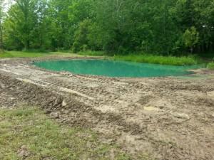 baby pond work