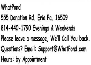 whatpond address pic250