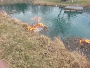 Pond Fire