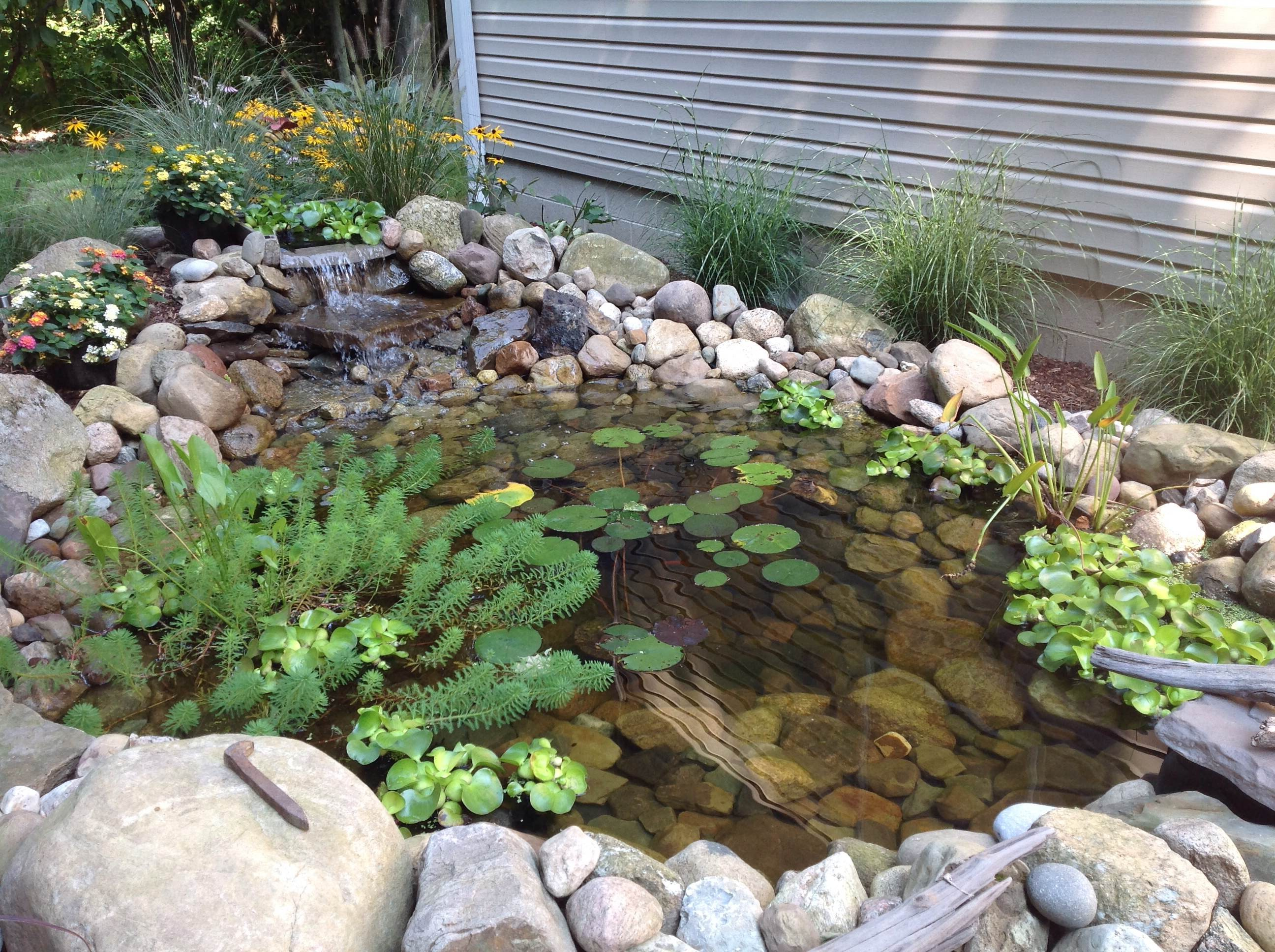 Index of wp content uploads 2014 10 for Small koi pond