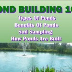 Pond Building 101