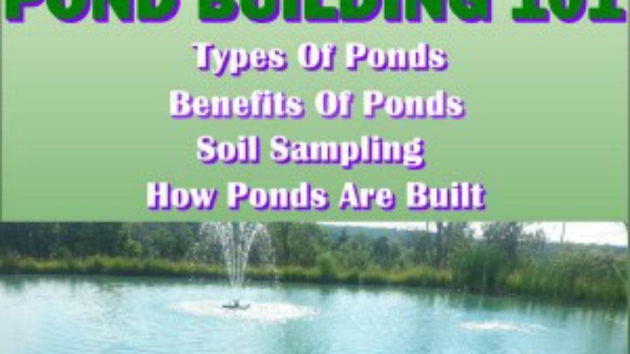 pond-building-101