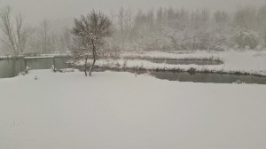Snow a few hours later at the pond
