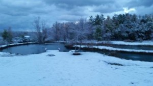 first snow on the pond 10 16