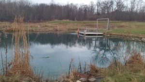 pond water level after