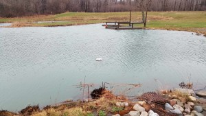 Spring pond full after storm-pond deck