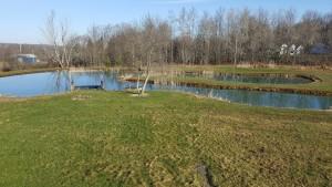 spring pond after burned 2016