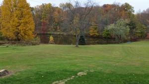 Large pond with alot of leaf litter