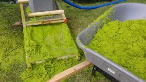 Collecting watermeal pump screen and wheel barrel